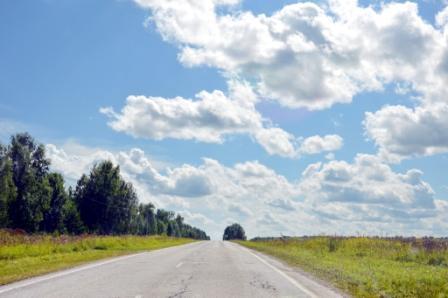 Дорога в Губино